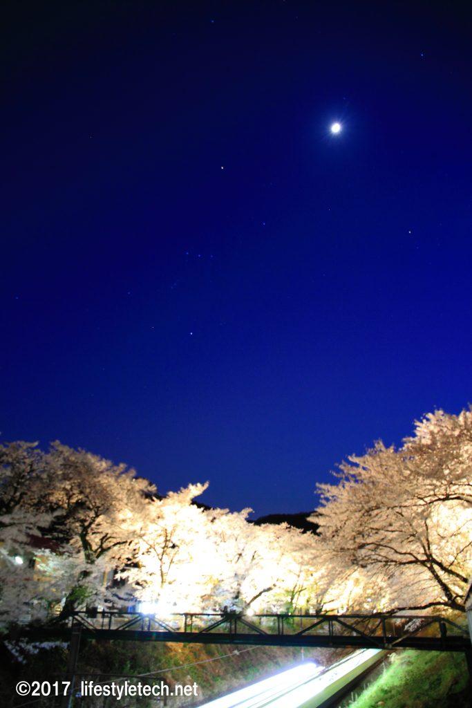 夜桜ライトアップと電車