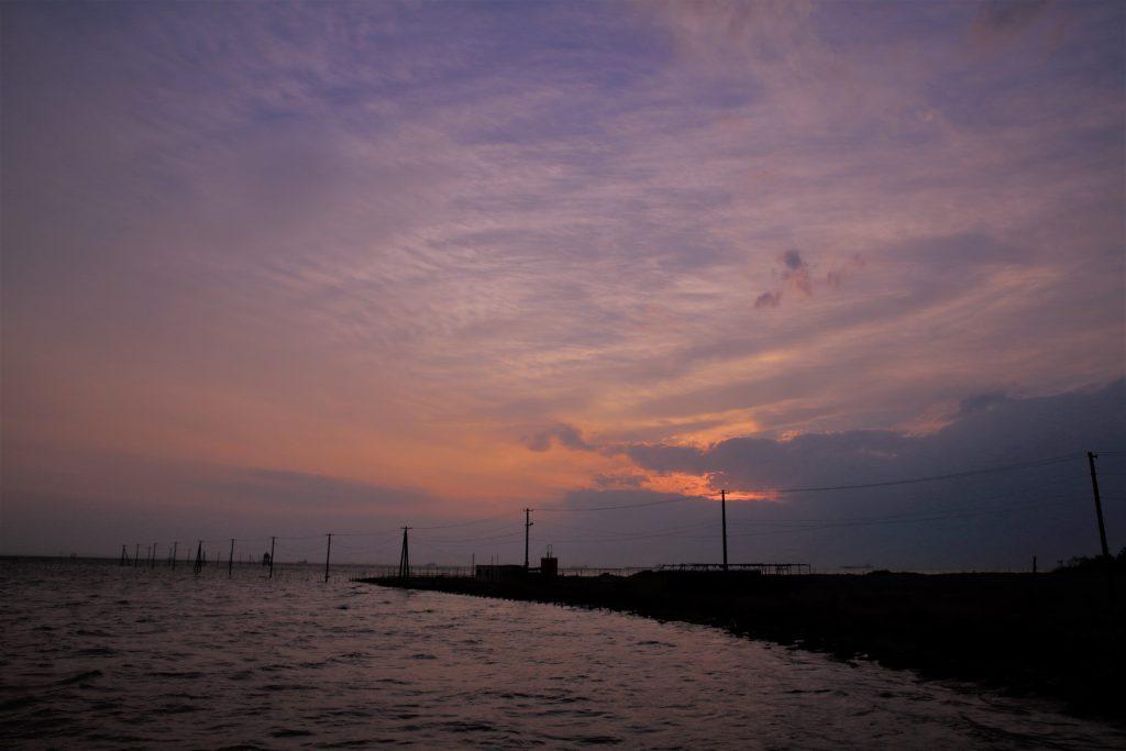 久津間海岸の電柱